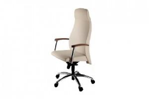 scaun-ergonomic-bendis